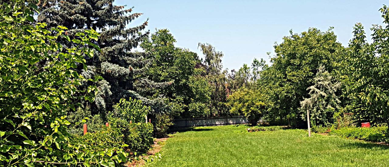Land for sale 20.290 €