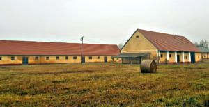 Agricultural property (#5046)