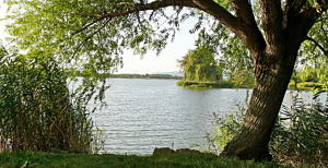 Fishing lake for sale (#5075)
