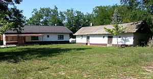 Farm for sale (#4118)