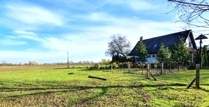 Farm for sale (#4123)