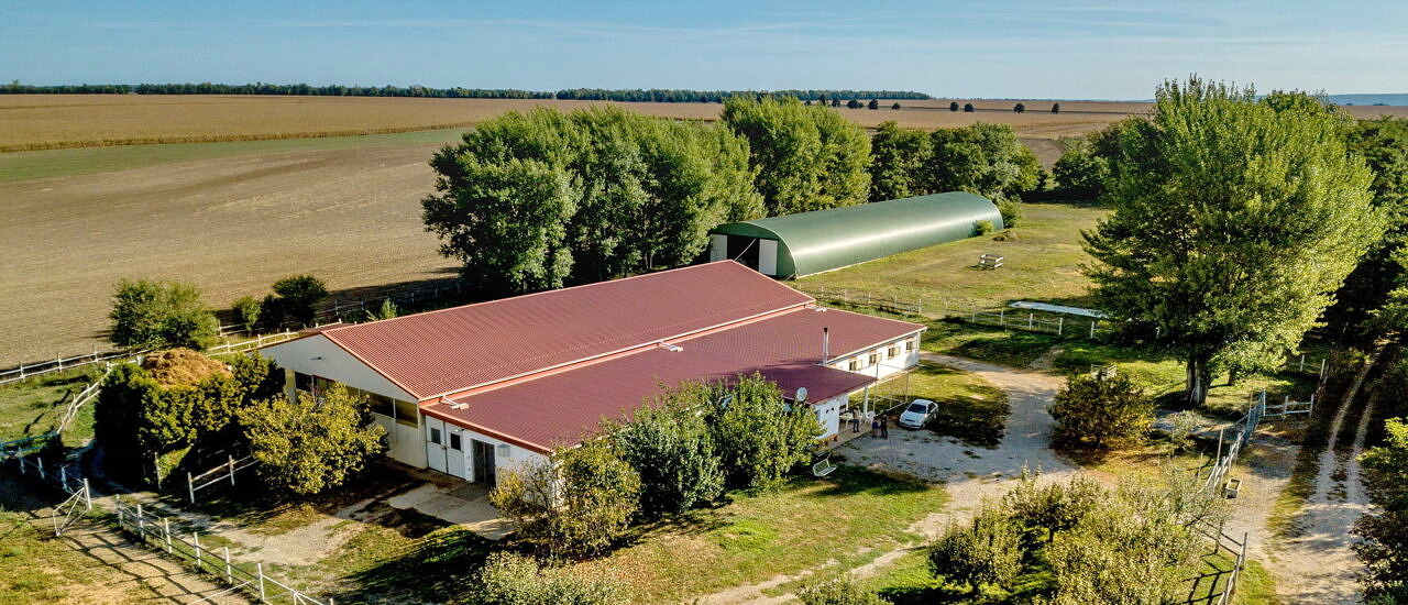Easily accessible 4-hectare manor with stable and riding hall, suitable for farming 186.000 €
