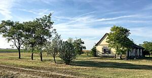 Farm for sale (#4168)