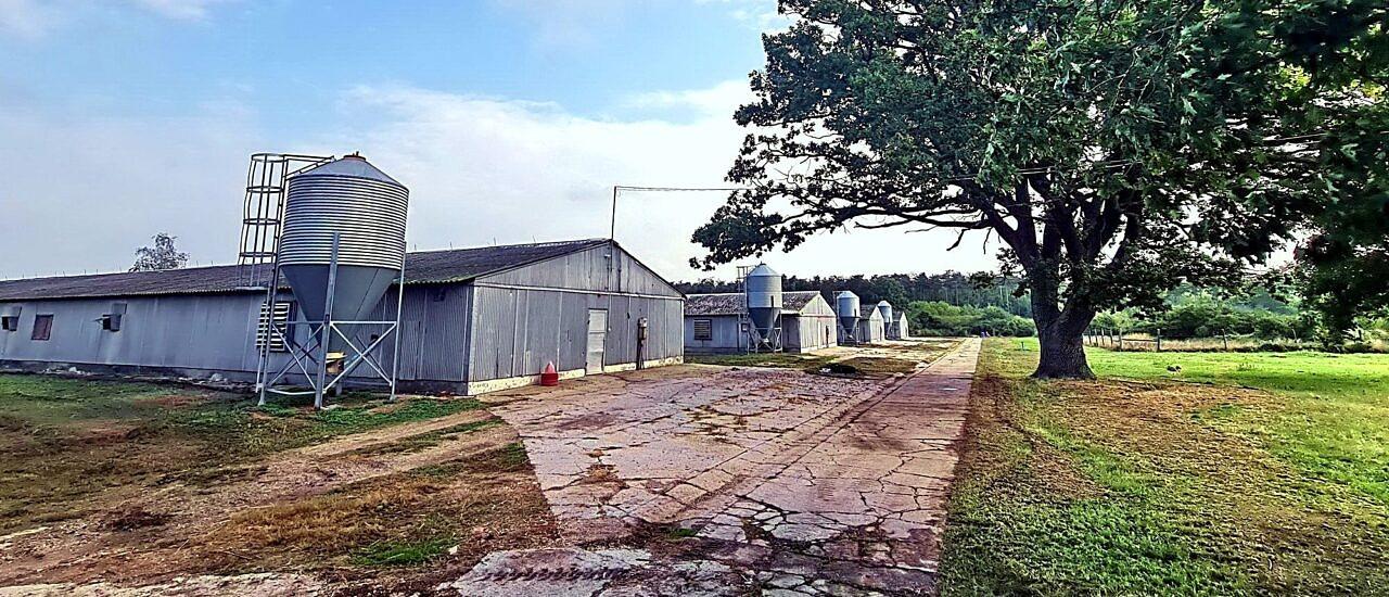 Großflächige landwirtschaftliche Immobilie für Viehhaltung mit mehreren Dienstleistungsbauten 2.722.000 €
